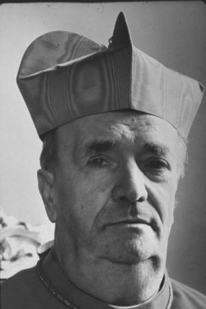 Cardinal Alfredo Ottaviani